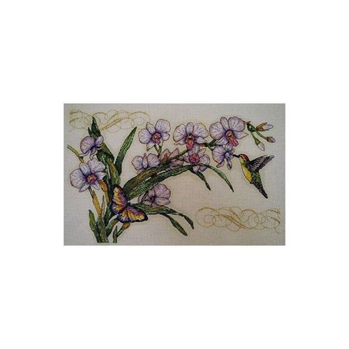 Picture of Orchids and Hummingbird