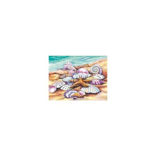 Picture of Shells