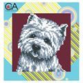 Picture of Highland Terrier
