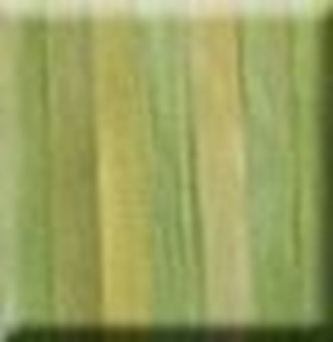 Picture of 7mm Silk Ribbon - 24 Mango