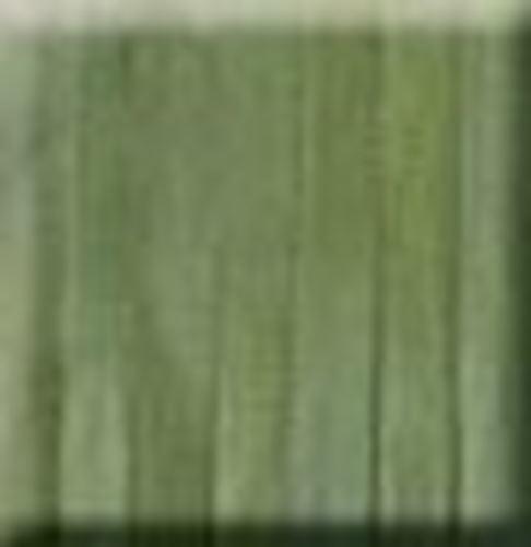 Picture of 7mm Silk Ribbon - 3 Bulrush