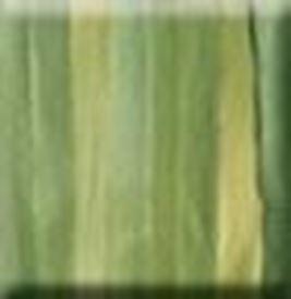 Picture of 7mm Silk Ribbon - 4b Fern