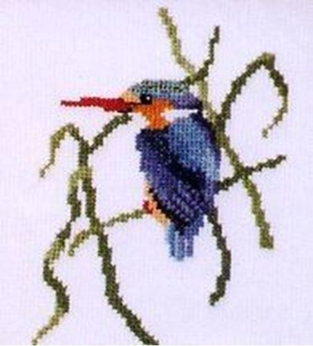 Picture of Malachite Kingfisher