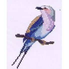 Picture of Lilac Breasted Roller
