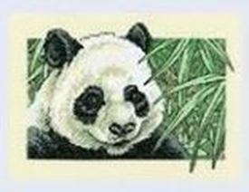 Picture of Panda Delight
