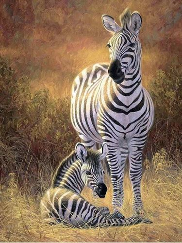Picture of Mom & Baby Zebra