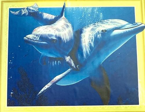 Picture of Dolphin Duo