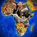 Picture of Big 5 Africa