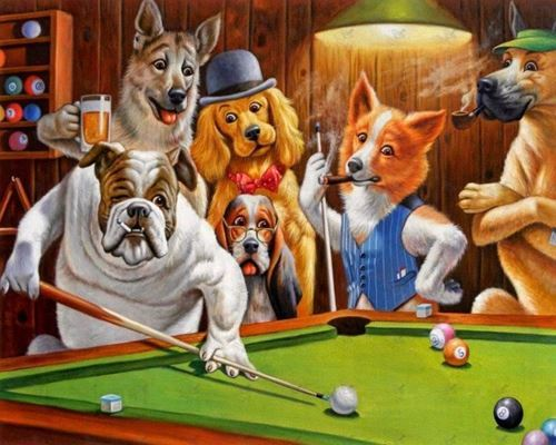 Picture of Dogs Playing Pool