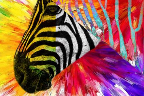Picture of Zebra Remix