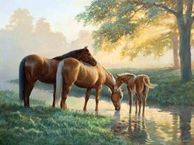 Picture of Loving Horse Family