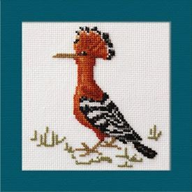 Picture of African Hoopoe