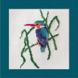 Picture of Malachite Kingfisher