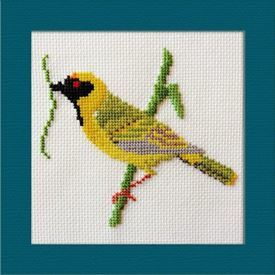 Picture of Masked Weaver