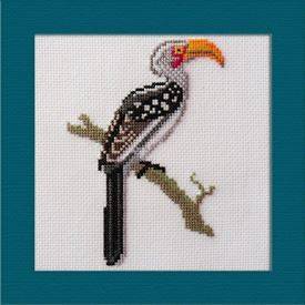 Picture of Yellow Billed Hornbill