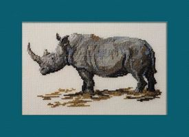 Picture of Rhinocerous