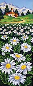 Picture of Field of Daisies