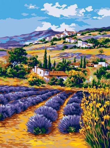 Picture of Lavender Fields