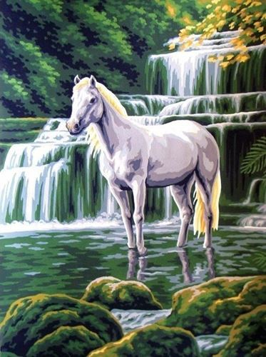 Picture of White Horse and Waterfall