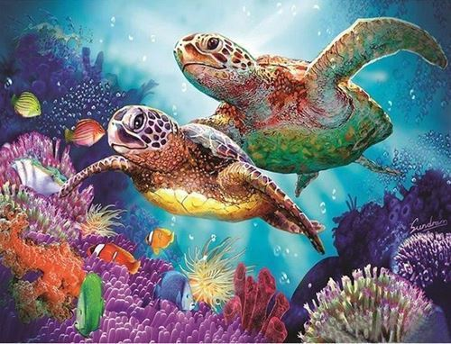 Picture of Coral Turtles