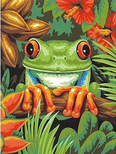 Picture of Tree Frog