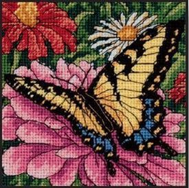 Picture of Butterfly on Zinnia