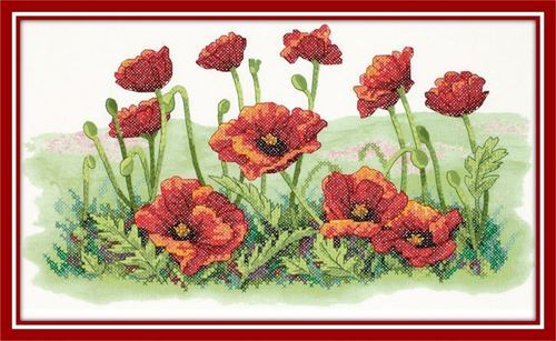 Picture of Field of Poppies