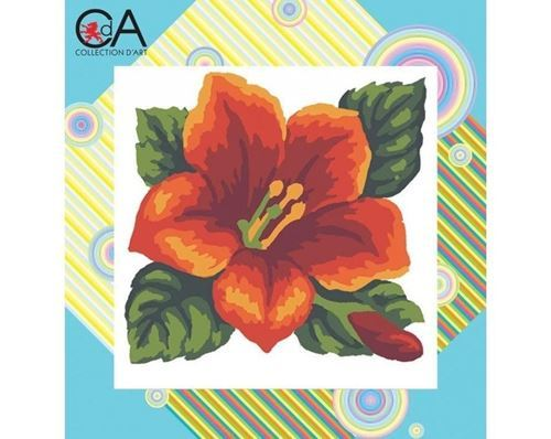 Picture of Red Hibiscus